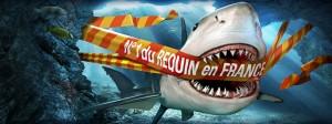 numero-un-du-requin-en-france