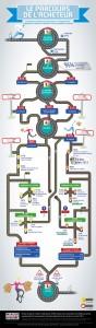 2204677-infographie-le-parcours-d-achat-des-francais (1)